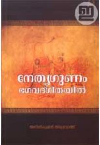 Nethrugunam Bhagavad Gitayil