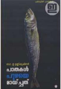 Paathakal Puzhaye Maaychathu